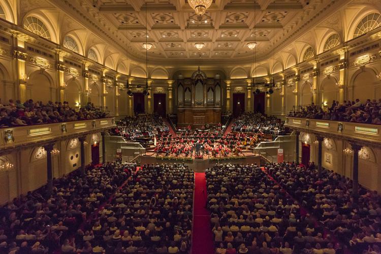 Tournee, Konzert, Violine, Unterricht Violinunterricht Probespielvorbereitung, coaching, geigenunterricht, Matthias Bruns, Stimmführer